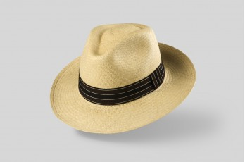 Ausin (large brim)